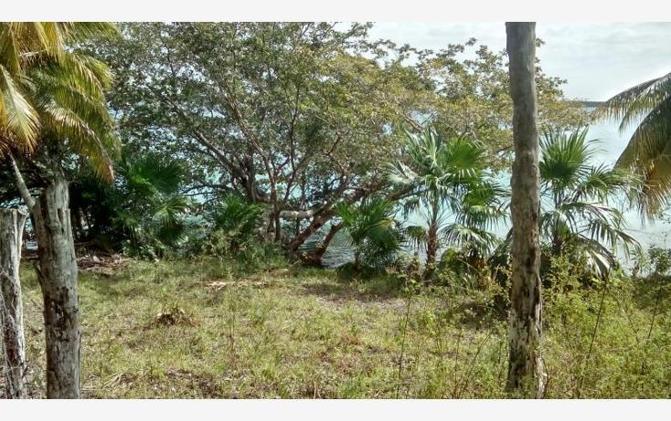 Foto de terreno comercial en venta en  30, bacalar, bacalar, quintana roo, 1849226 No. 11