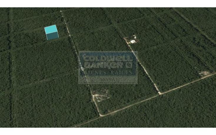 Foto de terreno habitacional en venta en  319, tulum centro, tulum, quintana roo, 328826 No. 03