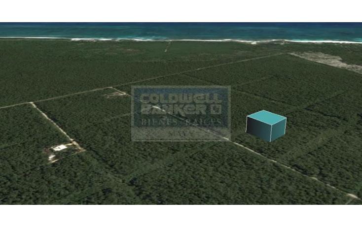 Foto de terreno habitacional en venta en  319, tulum centro, tulum, quintana roo, 328826 No. 05