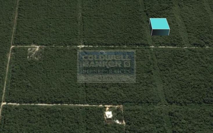 Foto de terreno habitacional en venta en  319, tulum centro, tulum, quintana roo, 328826 No. 06