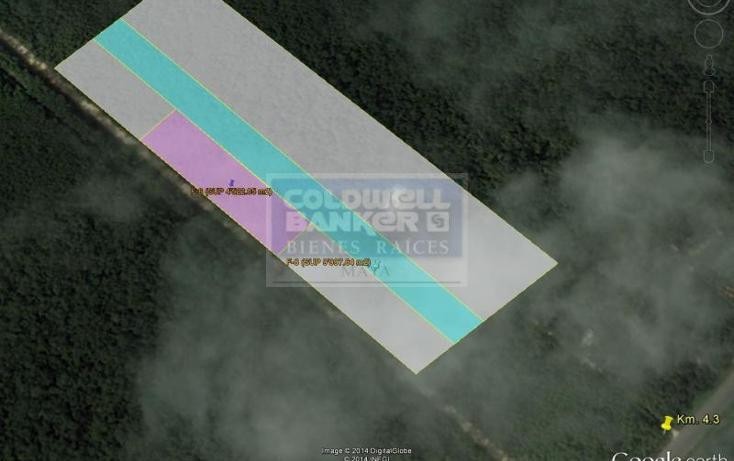 Foto de terreno habitacional en venta en  319, tulum centro, tulum, quintana roo, 328885 No. 04