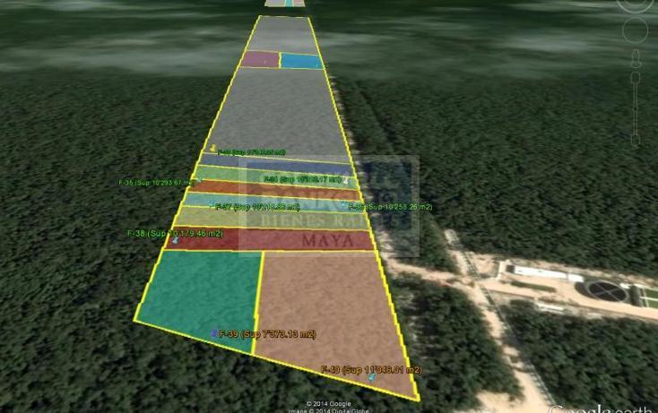 Foto de terreno habitacional en venta en  319, tulum centro, tulum, quintana roo, 328894 No. 03