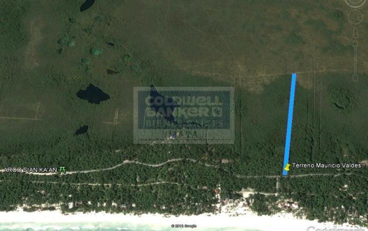 Foto de terreno habitacional en venta en  319, tulum centro, tulum, quintana roo, 328896 No. 03