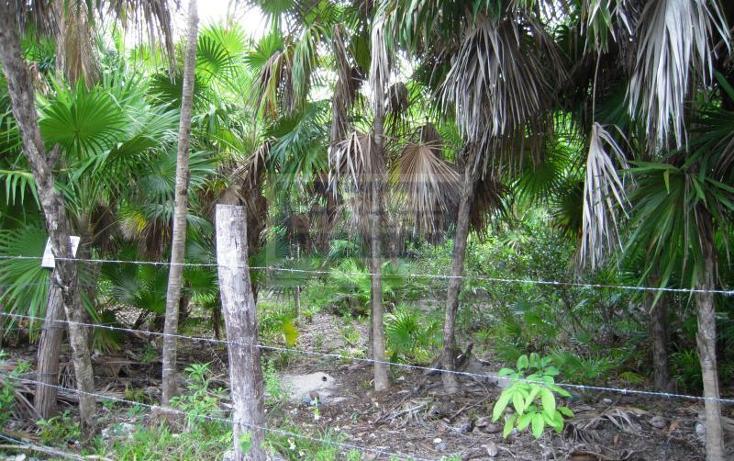 Foto de terreno habitacional en venta en  319, tulum centro, tulum, quintana roo, 328896 No. 05