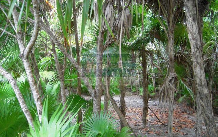 Foto de terreno habitacional en venta en  319, tulum centro, tulum, quintana roo, 328896 No. 06