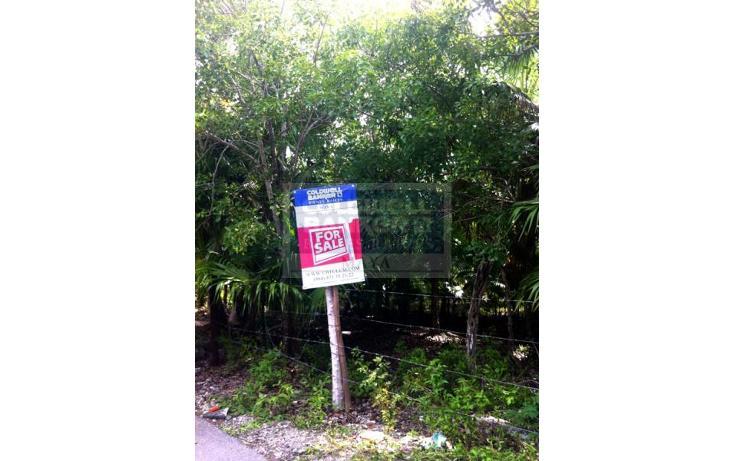 Foto de terreno habitacional en venta en  319, tulum centro, tulum, quintana roo, 328896 No. 07