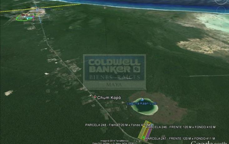 Foto de terreno habitacional en venta en  319, tulum centro, tulum, quintana roo, 328905 No. 07