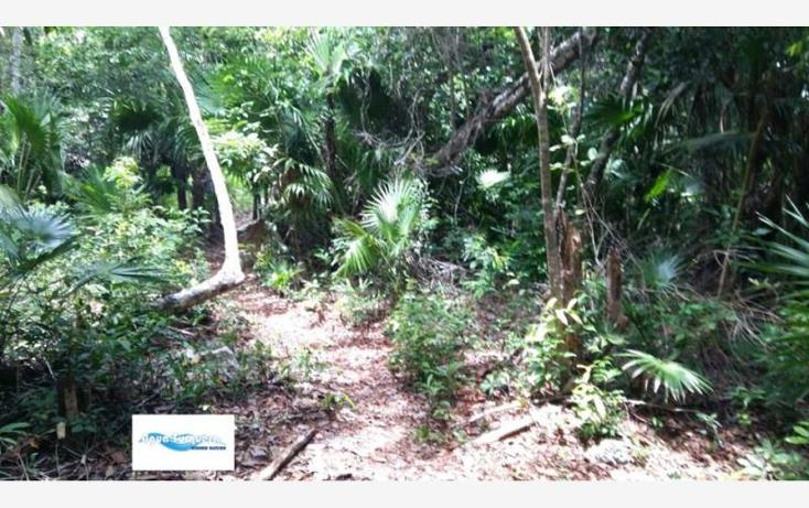 Foto de terreno comercial en venta en costera norte 35, bacalar, bacalar, quintana roo, 2695330 No. 02