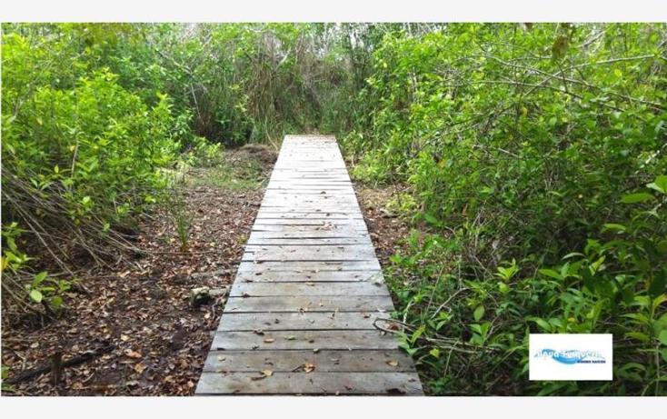 Foto de terreno comercial en venta en costera norte 35, bacalar, bacalar, quintana roo, 2695330 No. 03
