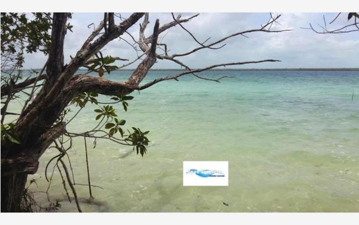 Foto de terreno comercial en venta en costera norte 35, bacalar, bacalar, quintana roo, 2695330 No. 05