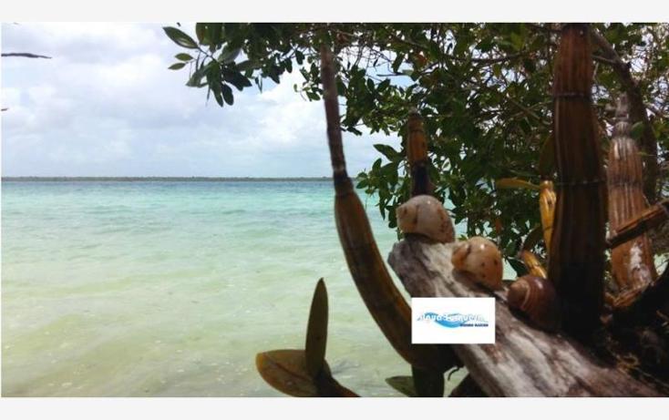 Foto de terreno comercial en venta en costera norte 35, bacalar, bacalar, quintana roo, 2695330 No. 07