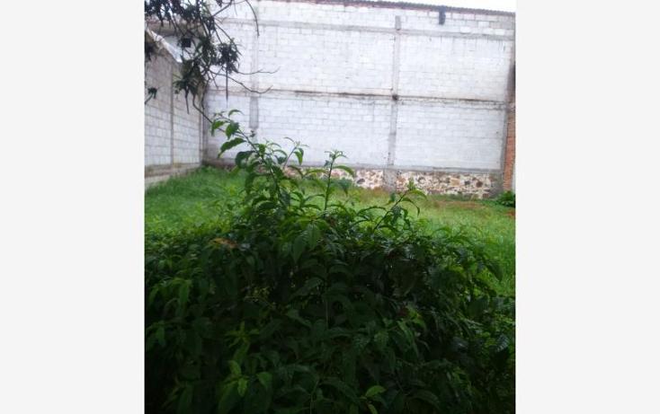 Foto de terreno habitacional en venta en ayehualulco 35, el moral, zacatlán, puebla, 2696512 No. 06