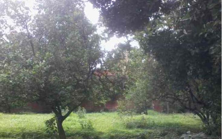Foto de terreno habitacional en venta en  35, itzamatitl?n, yautepec, morelos, 1561814 No. 03