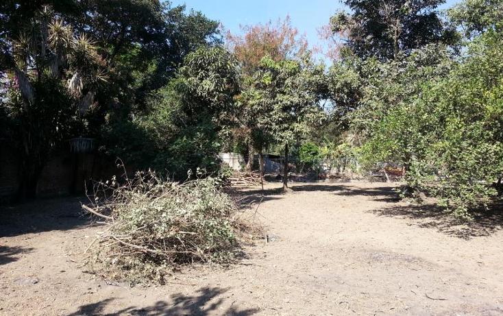 Foto de terreno habitacional en venta en  35, itzamatitl?n, yautepec, morelos, 1561814 No. 05