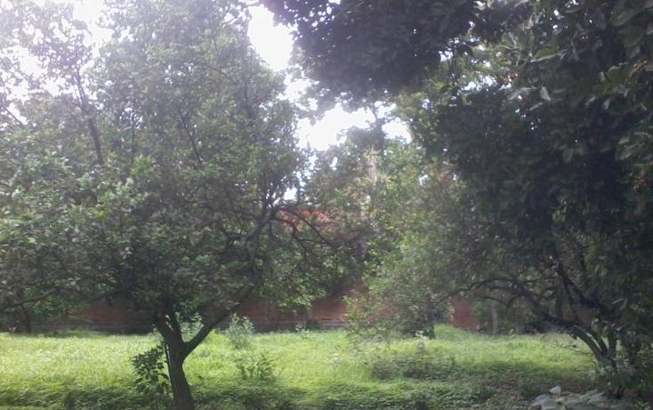 Foto de terreno habitacional en venta en  35, itzamatitl?n, yautepec, morelos, 1561814 No. 06