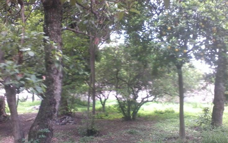 Foto de terreno habitacional en venta en  35, itzamatitl?n, yautepec, morelos, 1561814 No. 08