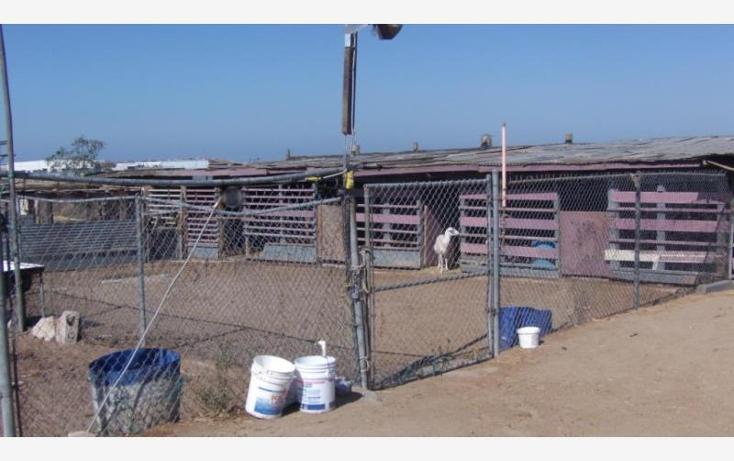 Foto de rancho en venta en  3507, salvatierra, tijuana, baja california, 885075 No. 13