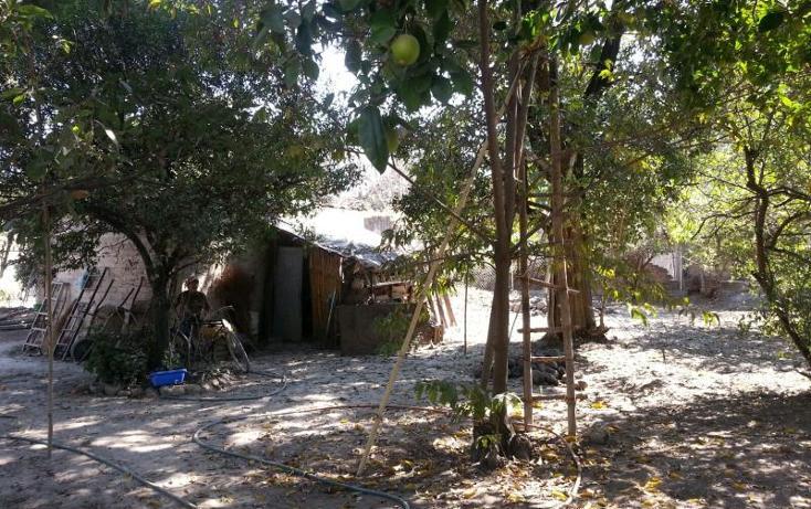 Foto de terreno habitacional en venta en  36, itzamatitlán, yautepec, morelos, 1443339 No. 04
