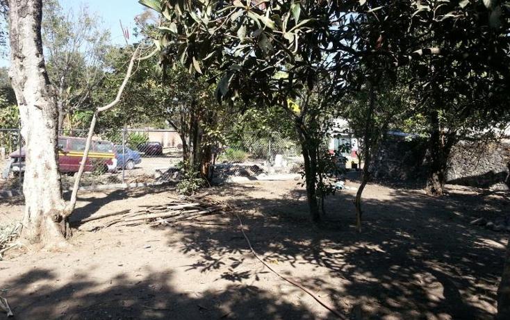 Foto de terreno habitacional en venta en  36, itzamatitlán, yautepec, morelos, 1443339 No. 05