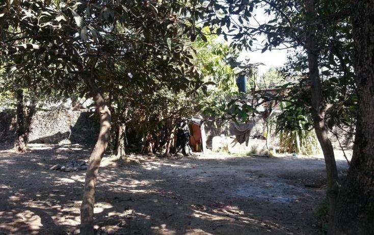 Foto de terreno habitacional en venta en  36, itzamatitlán, yautepec, morelos, 1443339 No. 06