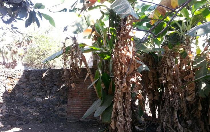 Foto de terreno habitacional en venta en  36, itzamatitl?n, yautepec, morelos, 1834632 No. 07