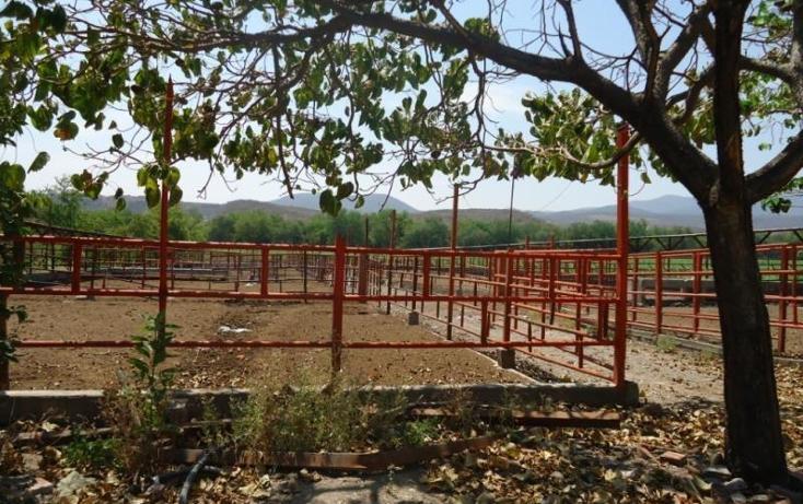 Foto de terreno habitacional en venta en  36, tehuixtla, jojutla, morelos, 1745591 No. 05