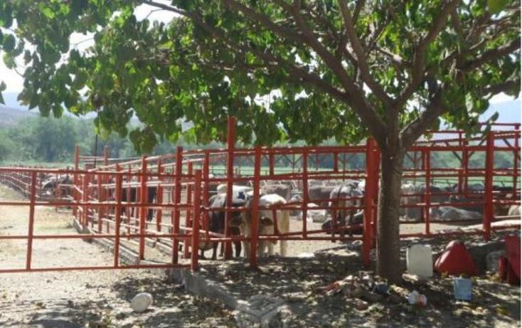 Foto de rancho en venta en  36, tehuixtla, jojutla, morelos, 1807252 No. 08