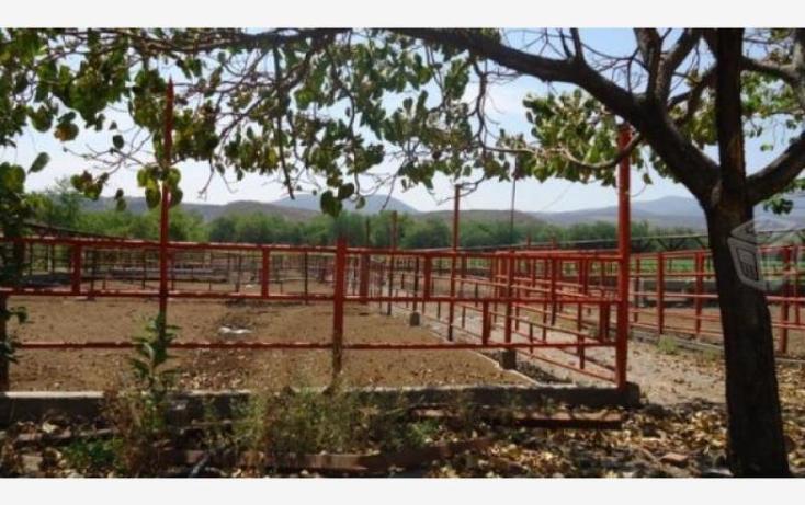 Foto de rancho en venta en  36, tehuixtla, jojutla, morelos, 1843420 No. 10