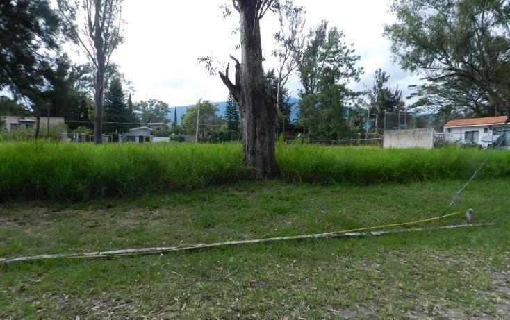 Foto de terreno habitacional en venta en  37, buenavista, ixtlahuacán de los membrillos, jalisco, 1473695 No. 02