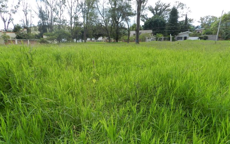 Foto de terreno habitacional en venta en  37, buenavista, ixtlahuacán de los membrillos, jalisco, 1473695 No. 04
