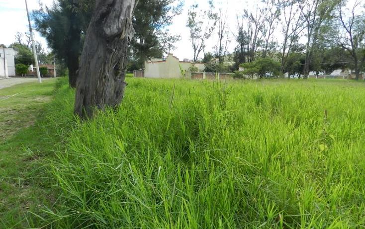 Foto de terreno habitacional en venta en  37, buenavista, ixtlahuacán de los membrillos, jalisco, 1473695 No. 05