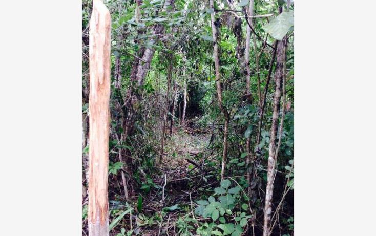 Foto de terreno comercial en venta en  4, bacalar, bacalar, quintana roo, 1689066 No. 03