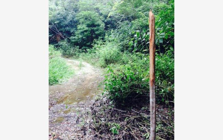 Foto de terreno comercial en venta en  4, bacalar, bacalar, quintana roo, 1689066 No. 04