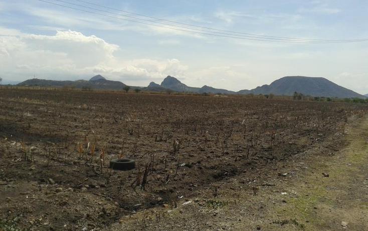 Foto de terreno comercial en venta en  4, buenos aires, tepalcingo, morelos, 482203 No. 04