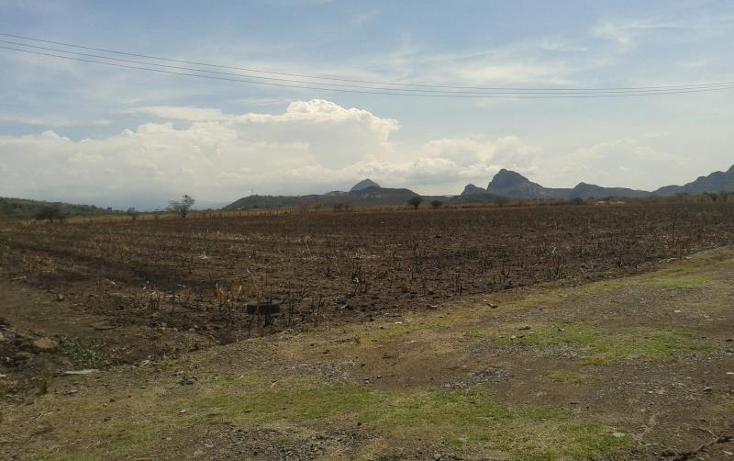 Foto de terreno comercial en venta en  4, buenos aires, tepalcingo, morelos, 482203 No. 05