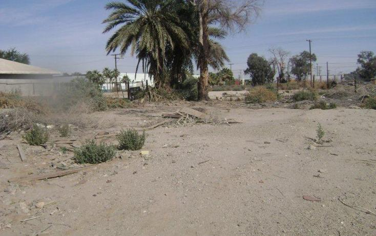 Foto de terreno habitacional en venta en  400, santa cecilia, mexicali, baja california, 1730030 No. 01