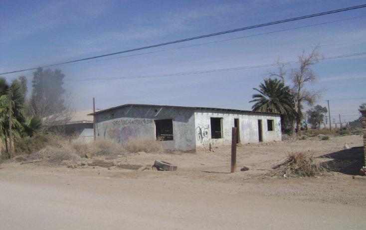 Foto de terreno habitacional en venta en  400, santa cecilia, mexicali, baja california, 1730030 No. 03
