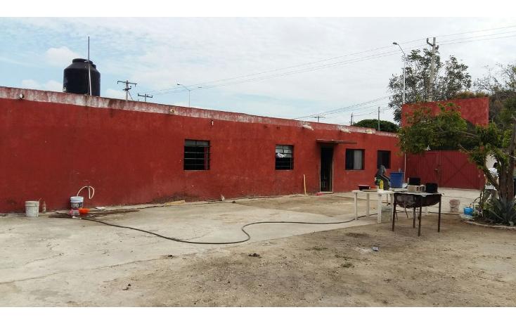 Foto de local en venta en  , tahdzibichén, mérida, yucatán, 1955497 No. 09