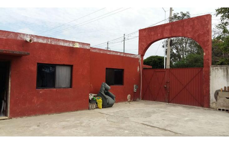 Foto de local en venta en  , tahdzibichén, mérida, yucatán, 1955497 No. 13