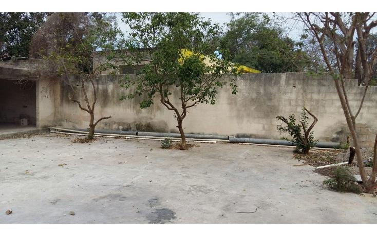 Foto de local en venta en  , tahdzibichén, mérida, yucatán, 1955497 No. 40