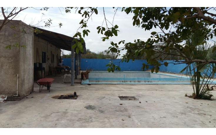 Foto de local en venta en 42 , tahdzibichén, mérida, yucatán, 1955497 No. 43