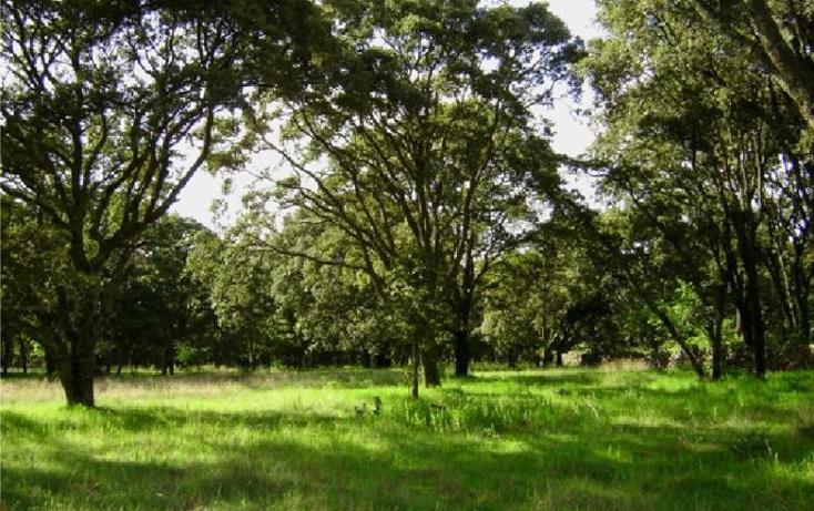 Foto de rancho en venta en  444, canalejas, jilotepec, m?xico, 701359 No. 01