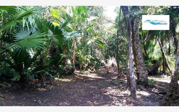 Foto de terreno comercial en venta en  46, bacalar, bacalar, quintana roo, 1760744 No. 04