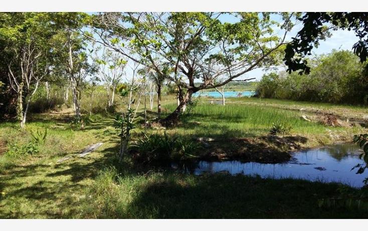 Foto de terreno comercial en venta en  5, bacalar, bacalar, quintana roo, 1689112 No. 06