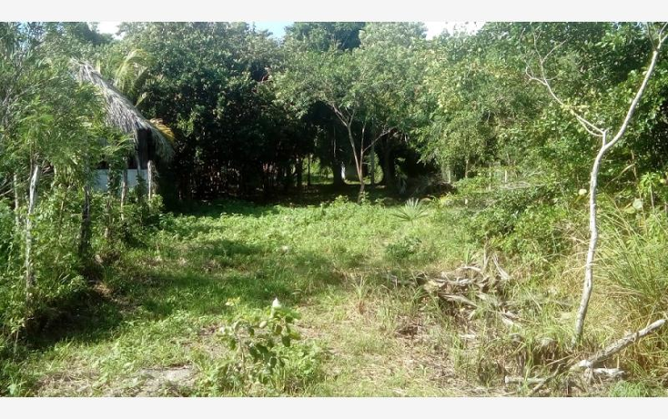 Foto de terreno comercial en venta en  5, bacalar, bacalar, quintana roo, 1728612 No. 02