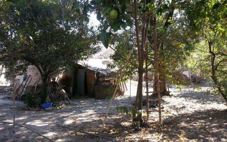 Foto de terreno habitacional en venta en 5 de mayo 16, el caracol campo chiquito, yautepec, morelos, 1503797 no 06