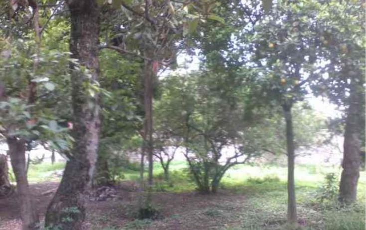 Foto de terreno habitacional en venta en 5 de mayo 19, centro, yautepec, morelos, 1804082 no 07