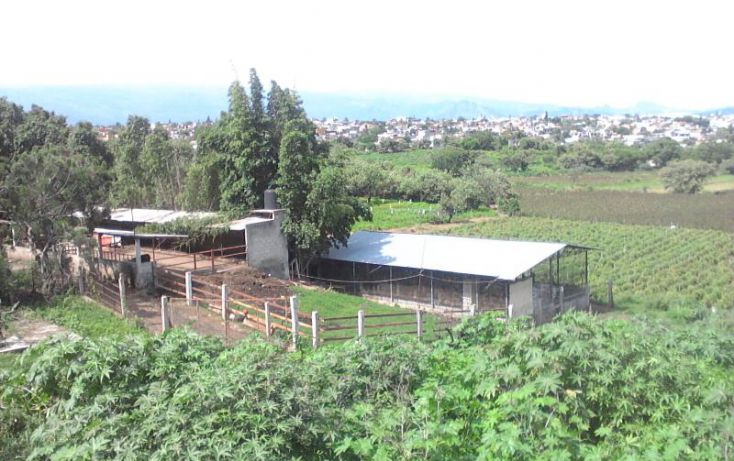 Foto de terreno habitacional en venta en 5 de mayo, ampliación chapultepec, cuernavaca, morelos, 1527112 no 03