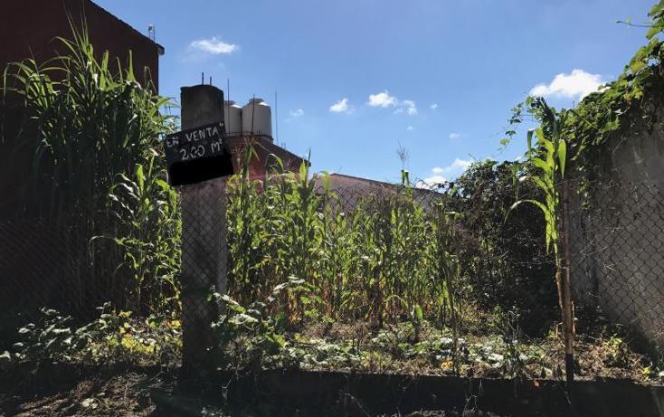 Foto de terreno habitacional en venta en primavera 5, las trancas, emiliano zapata, veracruz de ignacio de la llave, 2659906 No. 02