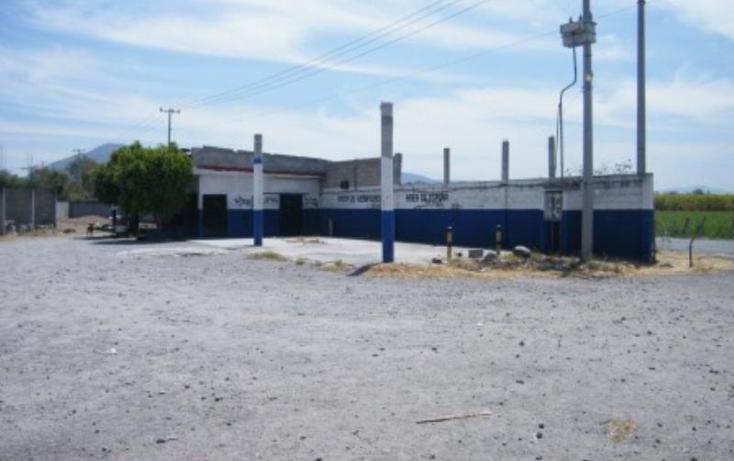 Foto de terreno comercial en venta en  5, plan de ayala, zacatepec, morelos, 411901 No. 05